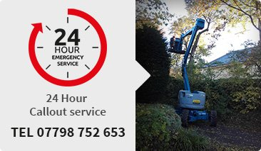 Tree surgeons Spencers Wood