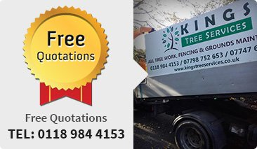 Tree services in Goring